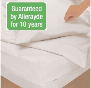 Square Dust Mite Proof Pillow Encasing